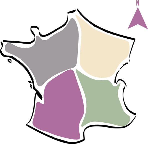 Les vins par région